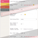 Basic Settings including width, height, effect, number of slides and more
