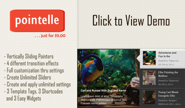 Pointelle Slider WordPress Plugin