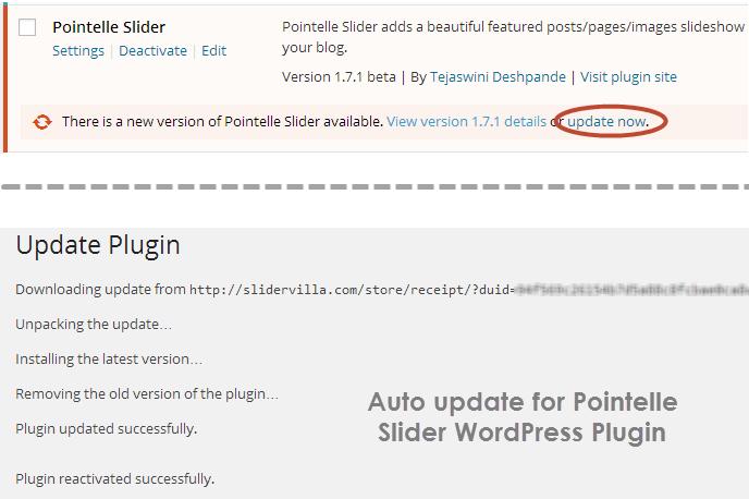 pointelle_auto_update